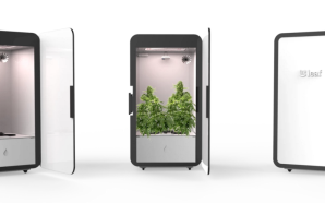 Personal Cannabis Growing Box